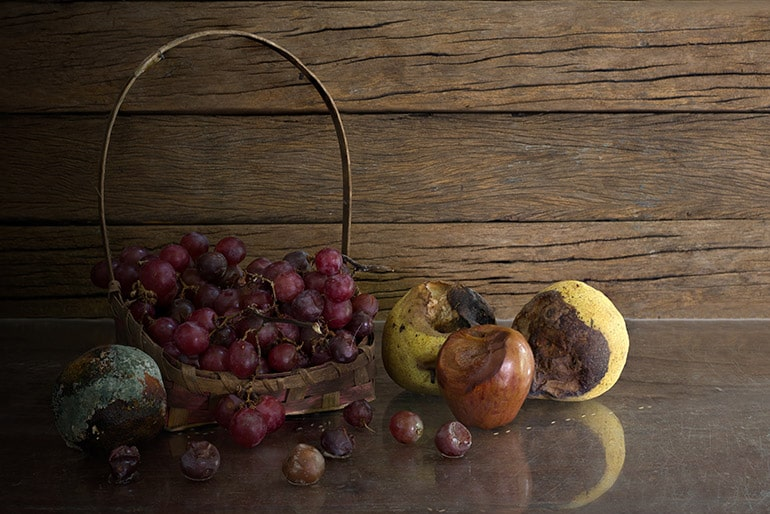 Comment éliminer les moucherons des corbeilles de fruits ?
